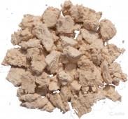 Агарикус (лиственничный гриб)