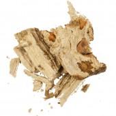 Мужик корень (молочай паласса)